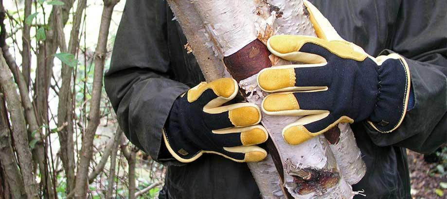 Header_brand-image-gold-leaf-gloves-919x410