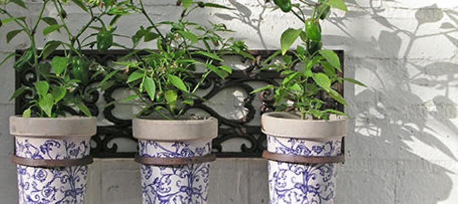 Header_plant-stuff-50-100-wall-three-pot-holder