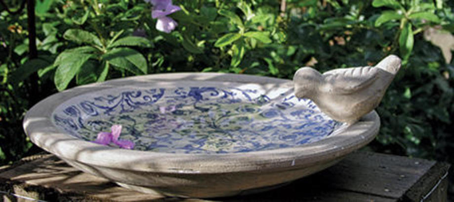 Bird Baths The Worm That Turned Revitalising Your