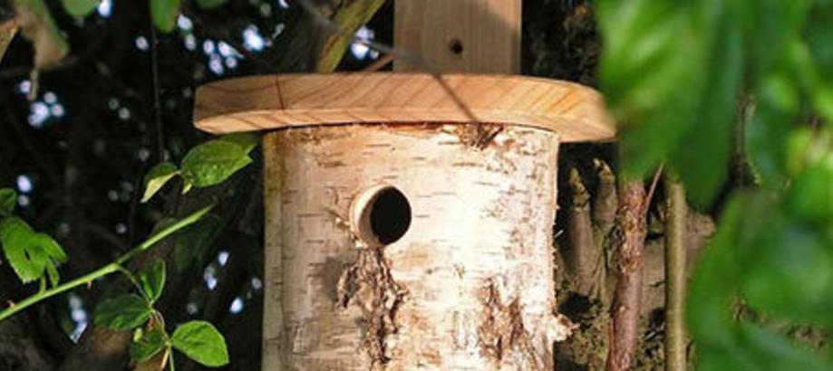 Header_garden-friends-10-25-natural-log-nesting-box