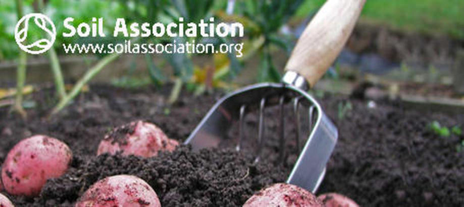 Header_soil-association-potato-scoop