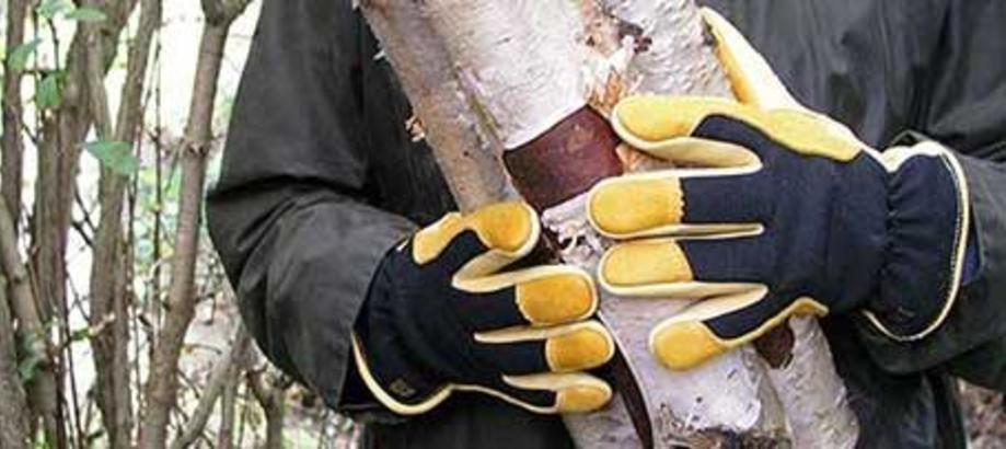 Header_for-the-gardener-gloves-footwear-winter-touch-gloves