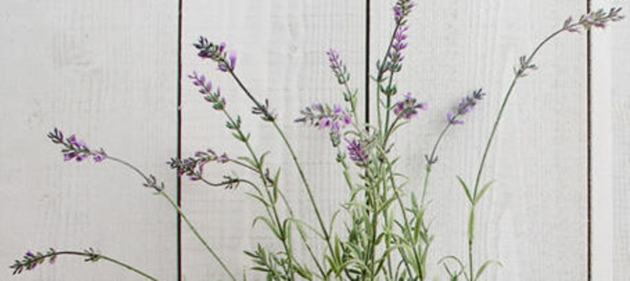Header_artificial-plants-faux-lavender