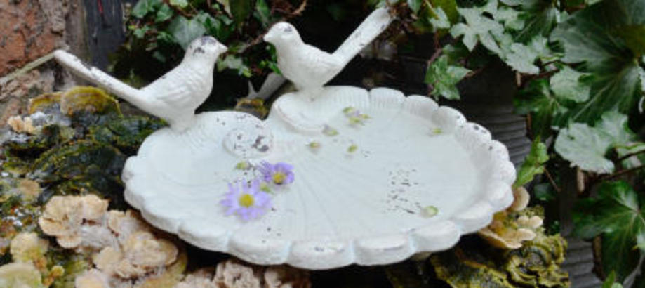 Header_garden-art-decor-small-garden-spaces-bird-dish