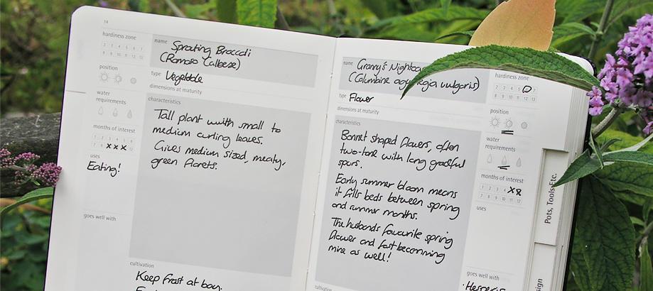 Header_for-the-gardener-allotment-gardener-gardeners-journal