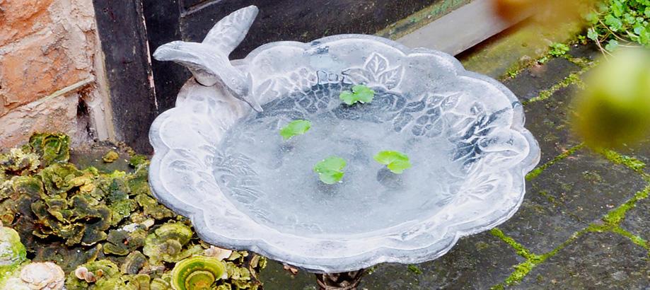 Header_garden-art-and-decor-50-100-elegant-birdbath