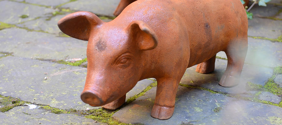 Header_garden-art-and-decor-cast-iron-cast-iron-pigs