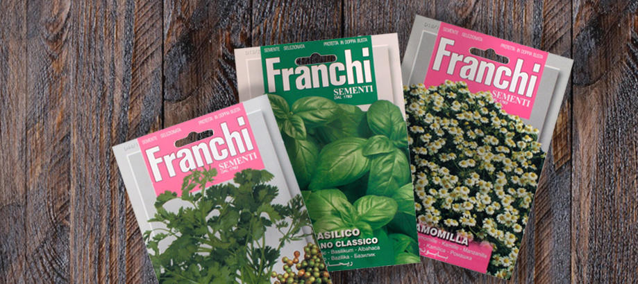 Header_plant-stuff-seeds-franchi-seeds