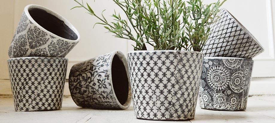 Header_plant-stuff-gifts-10-20-vintage-pots