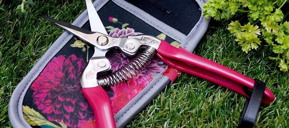 Header_for-the-gardener-10-20-british-bloom-snips