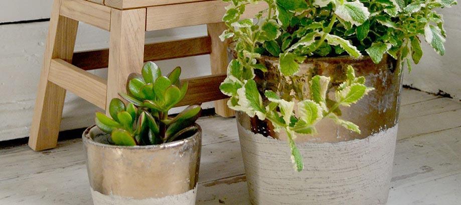 Header_garden-art-and-decor-20-30-conic-pots
