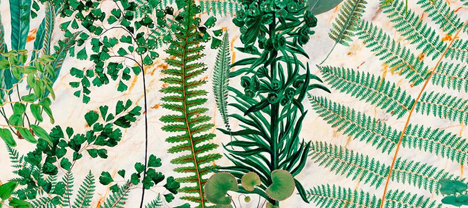 Header_garden-art-and-decor-interior-botanical-wall