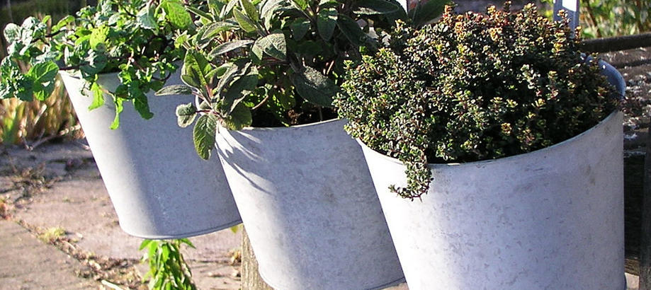 Header_plant-stuff-materials-zinc-balcony-planter