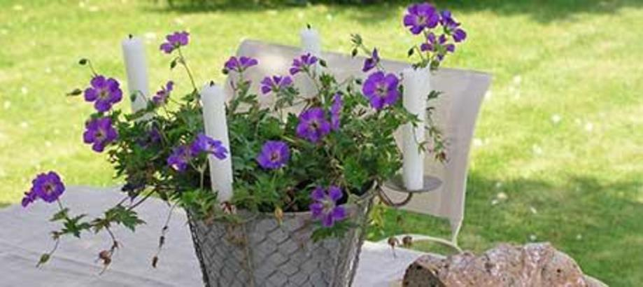 Header_garden-art-decor-cottage-garden-decor-zinc-plant-pot-candle-holder