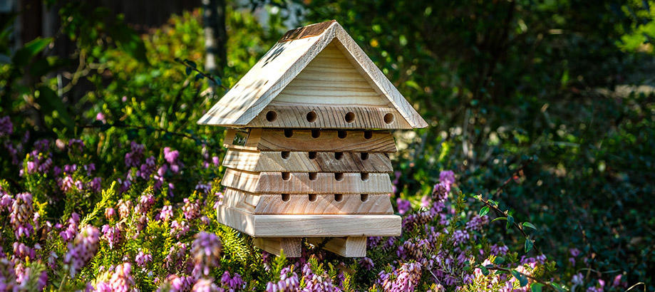 Header_garden-friends-birds-and-bees-flip-beehive