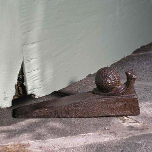 Snail Door Wedge