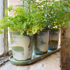 Green Glazed Herb Pots with Saucer