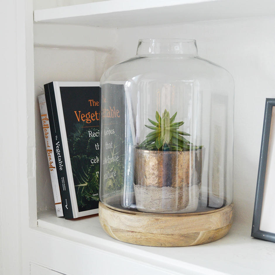 Terrarium Display Dome with Wooden Base