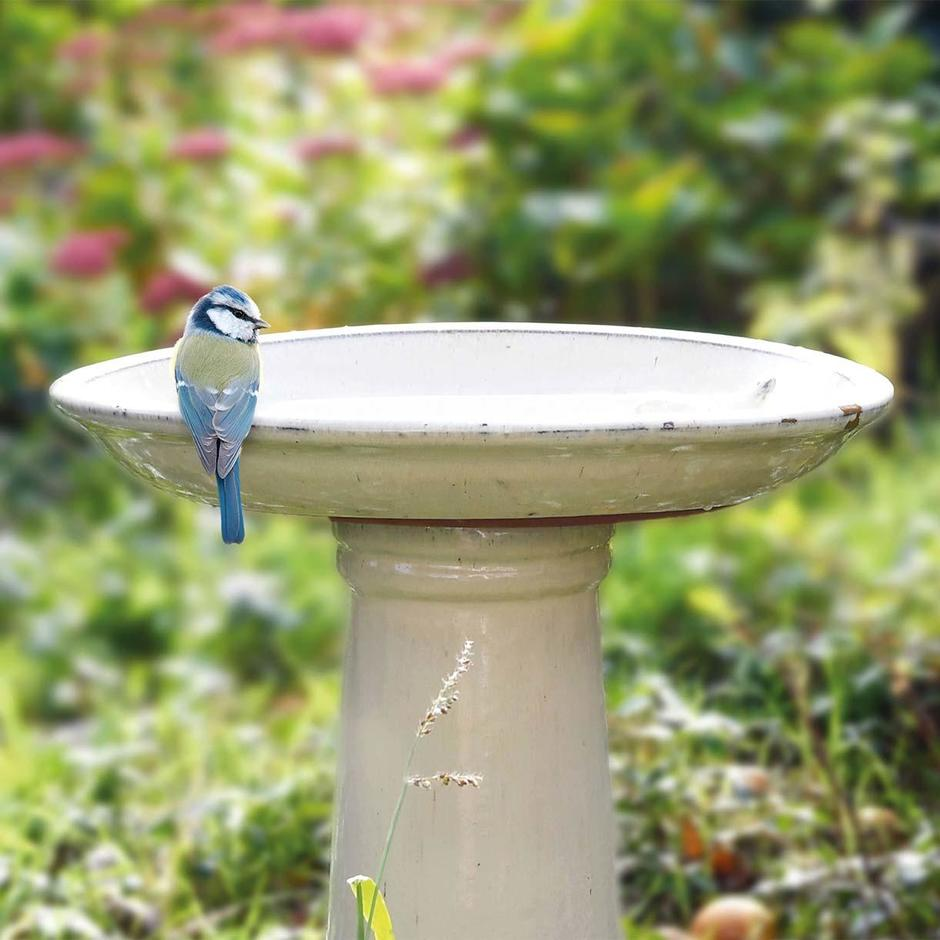 Cream Bird Bath and Stand