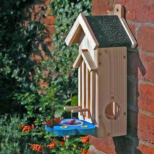 Butterfly Feeder/House
