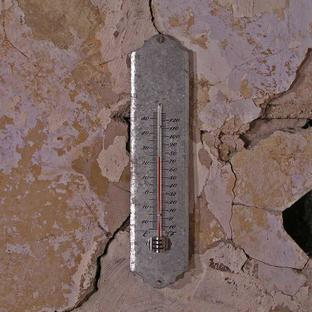 Zinc Thermometer
