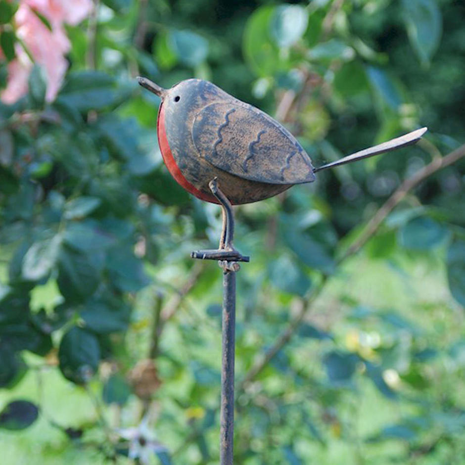 Tin Robin on Stake