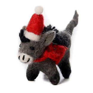 Little Donkey in Scarf and Hat