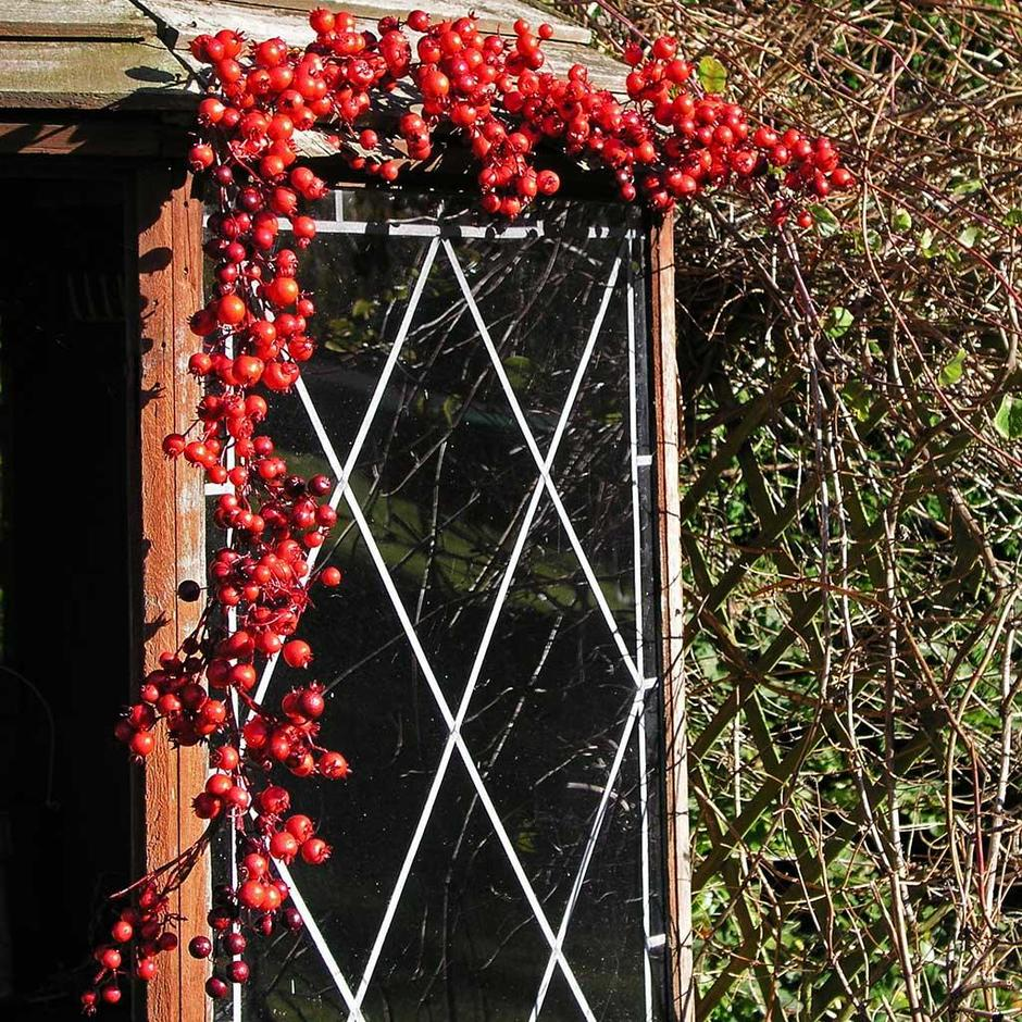 Outdoor Red Berry Garland