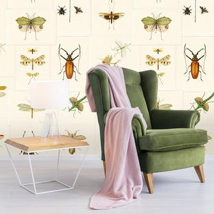Entomology Feature Wallcovering