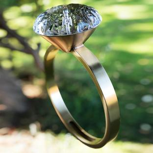 Solitaire Diamond Ring Birdfeeder