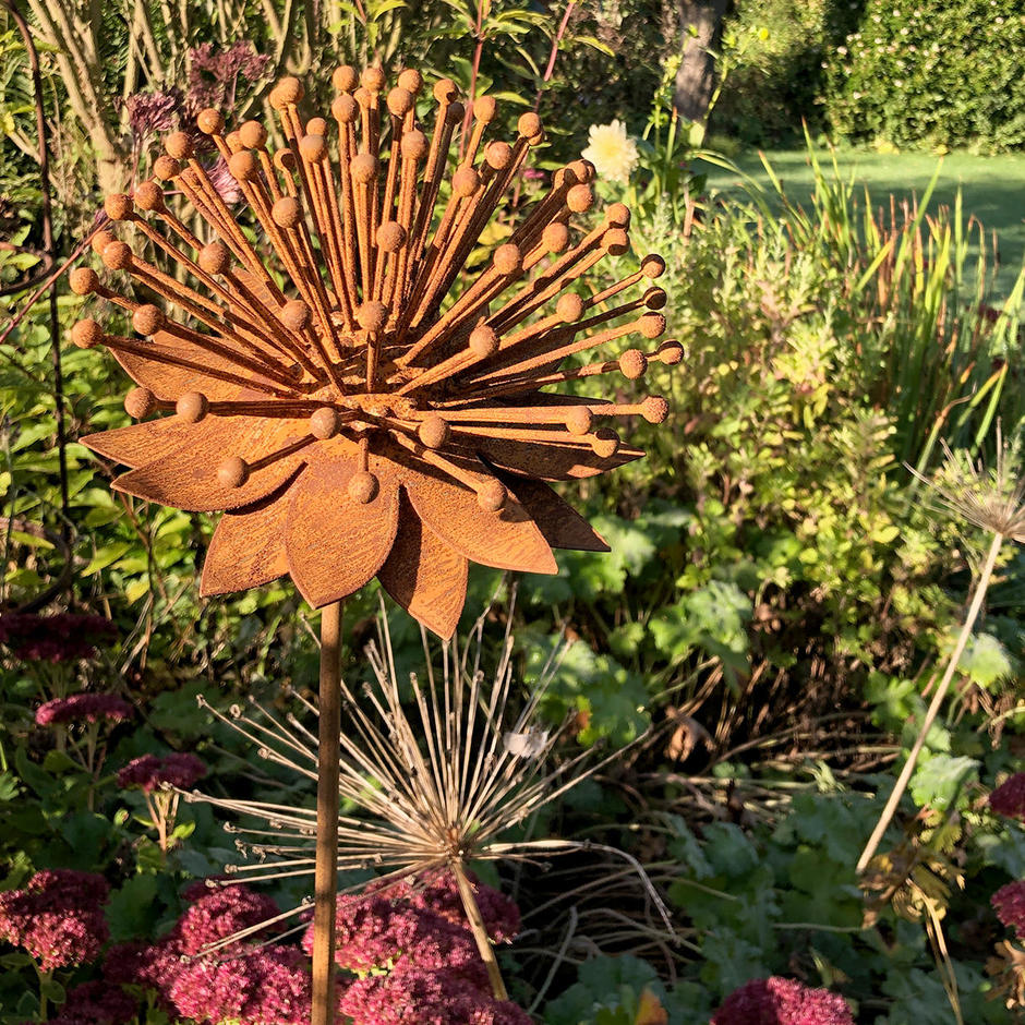 Rusted Enchinacea Flower