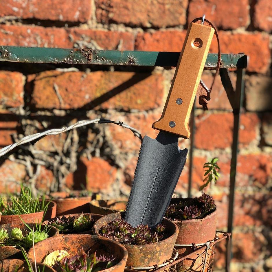 Root and Transplanting Tool