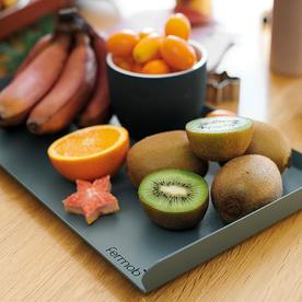 Small Alto Tray by Fermob