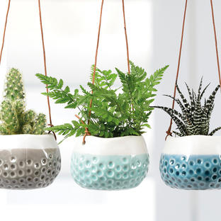 Three Dotty Hanging Pots
