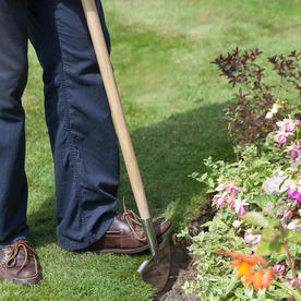 Stainless Steel Lawn Edger