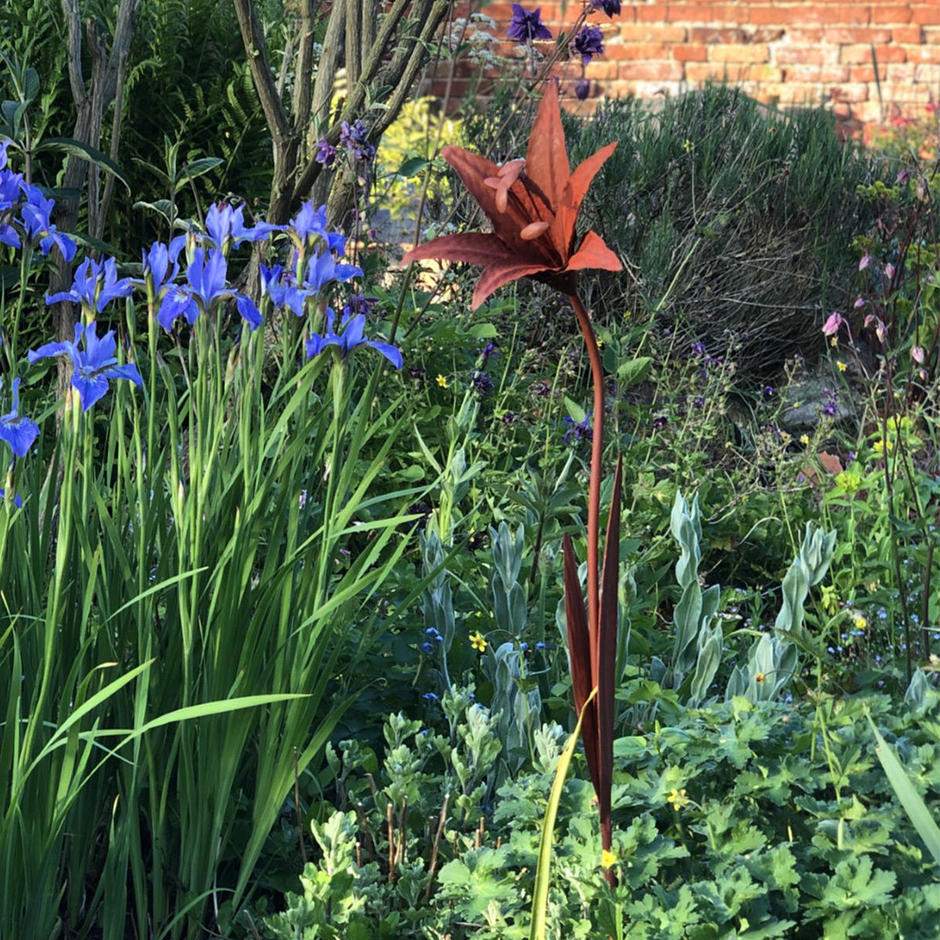 Rusting Metal Day Lily