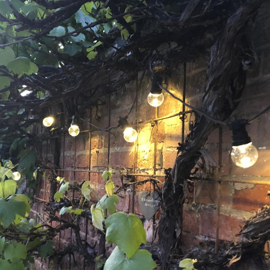 Outdoor Extendable Clear LED Festoon Lights Sets