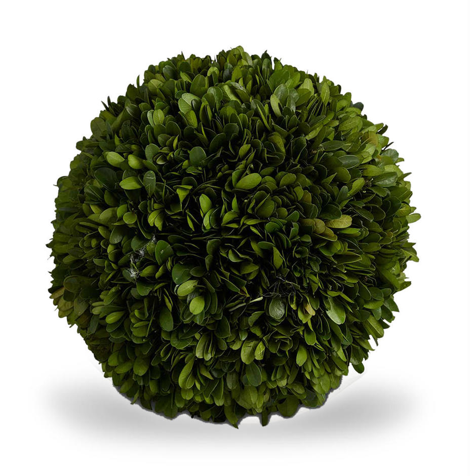 Preserved Topiary Balls