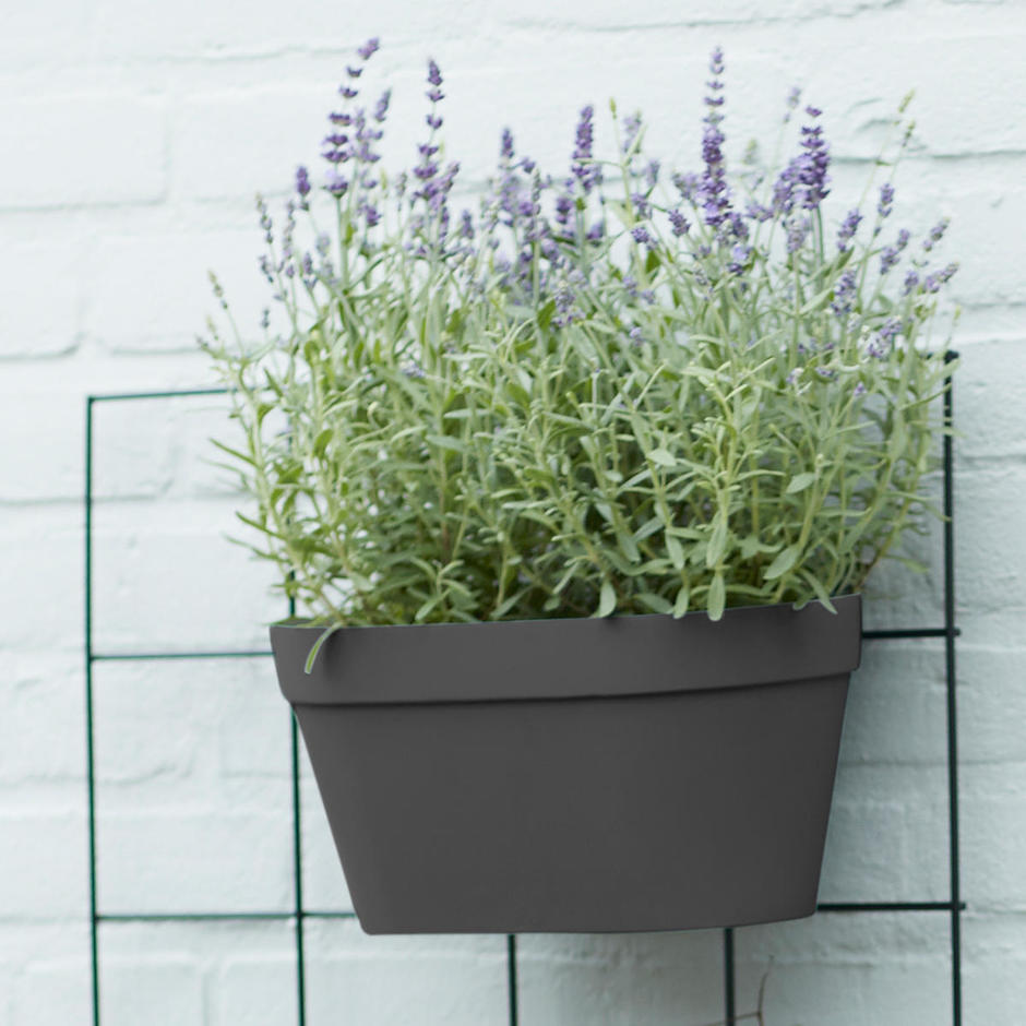 Urban Display Duo Wall Pot