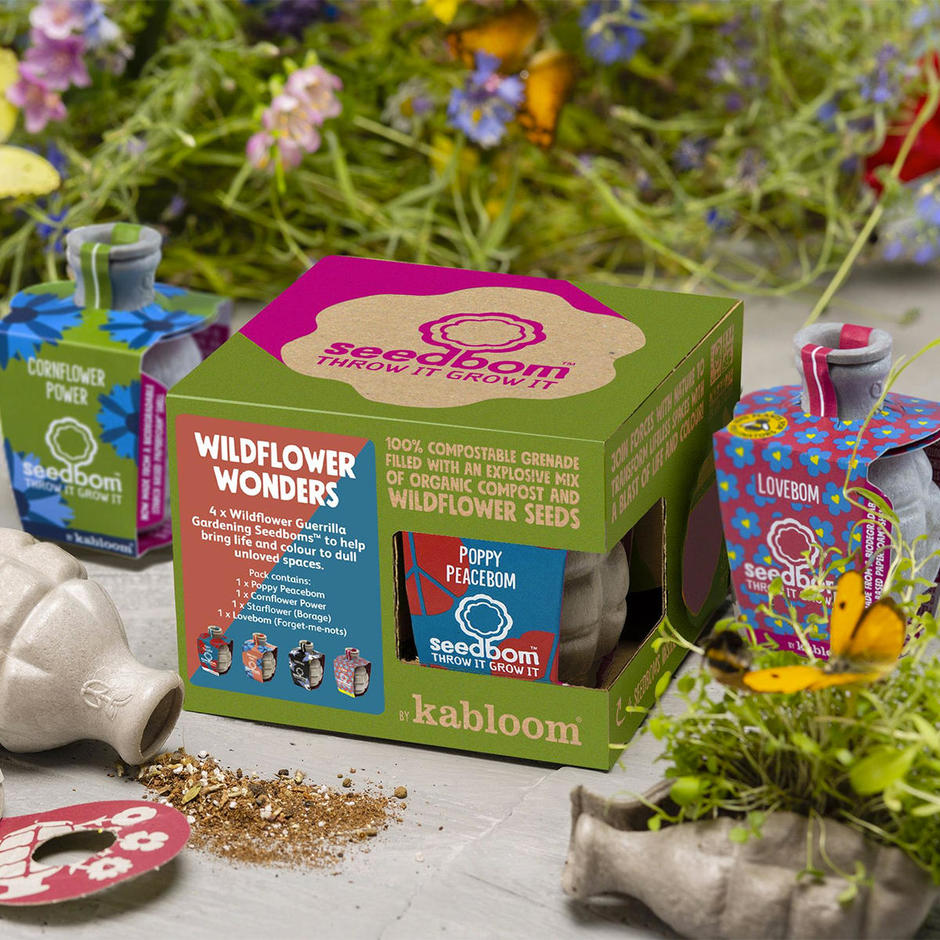 Seedbom Set of 4 - Wildflower Wonders
