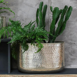 Silver Hammered Oval Finish Indoor Planter