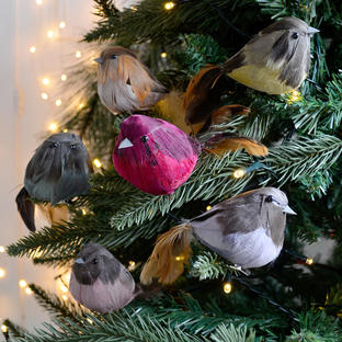 Feathered Finches Tree Decorations