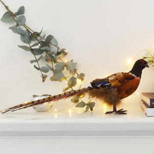 Phileas Pheasant Decoration