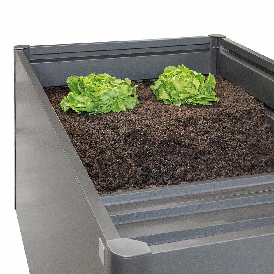 BioHort Intermediate Floor Rectangular Raised Vegetable Bed