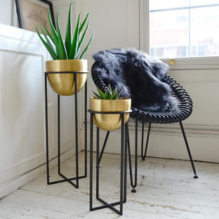 Brass Planters on Ironwork Stand