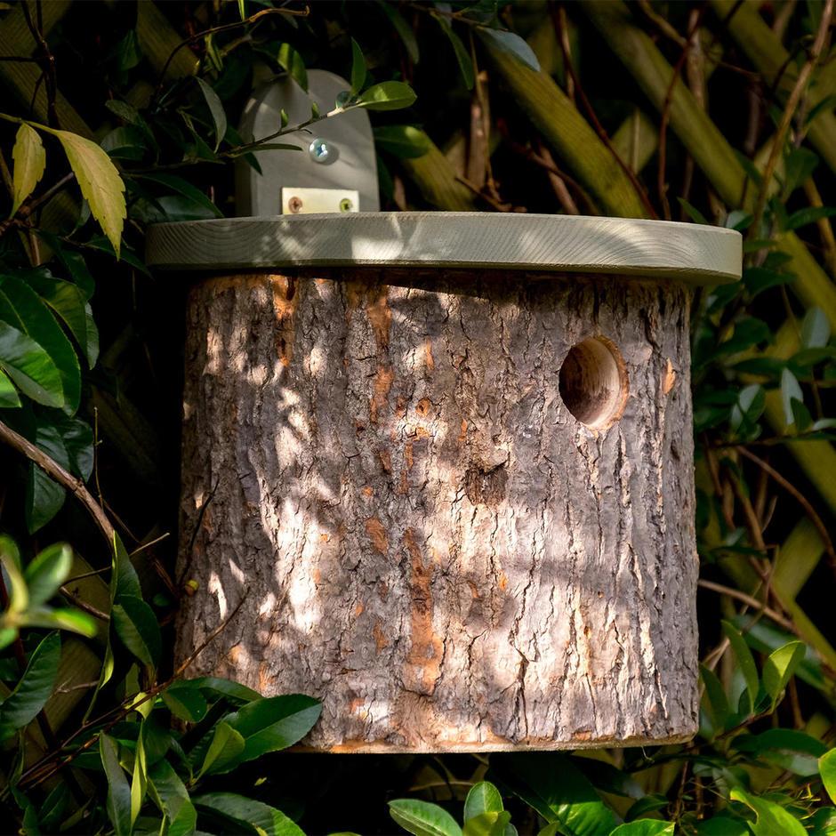 Home_main_nt_n7nt_log-bird-house11