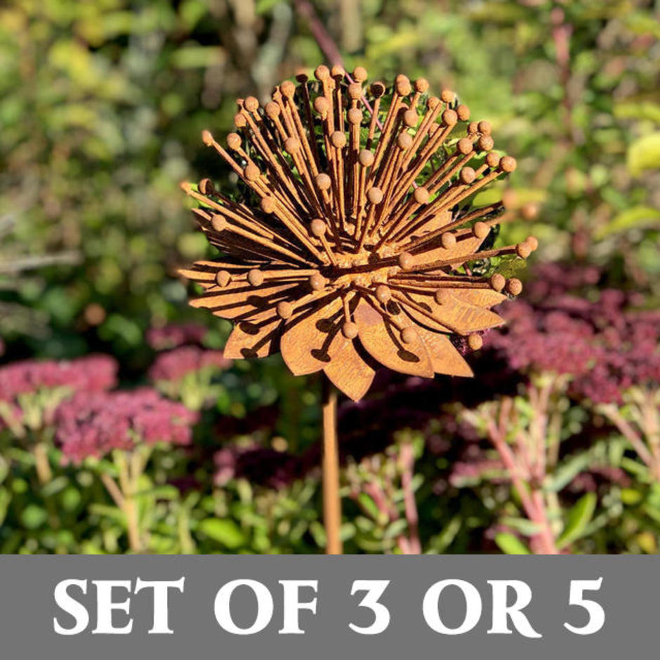 Rusted Enchinacea Flower Sets