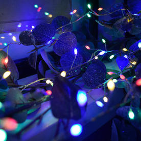 Colour Changing Cluster String Lights