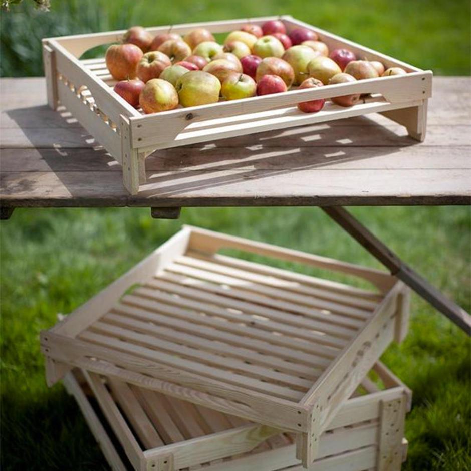 Apple tray