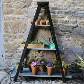 Plant Display Ladder
